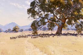 Grampians Grazing Country