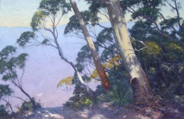Dappled Light, Katoomba 1.66m X 2m