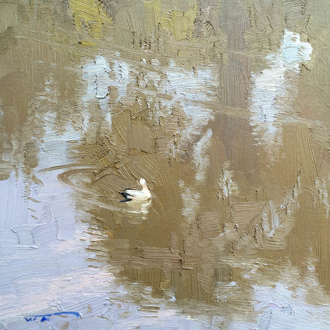 Pelican.-Darling-River-Bourke.-30x30cm-copy.jpg