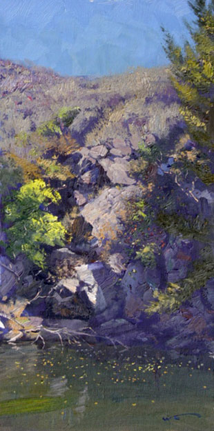 Turon River Rockface