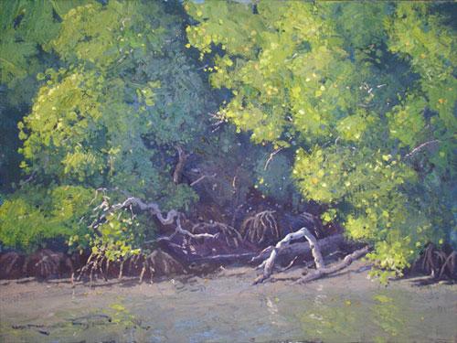 Mangrove Tapestry