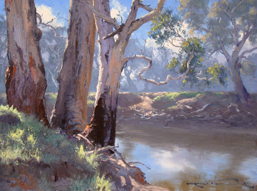 River Gums Near Forbes