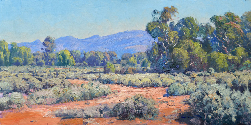 Across to the Barrier Range, Silverton 30x60cm