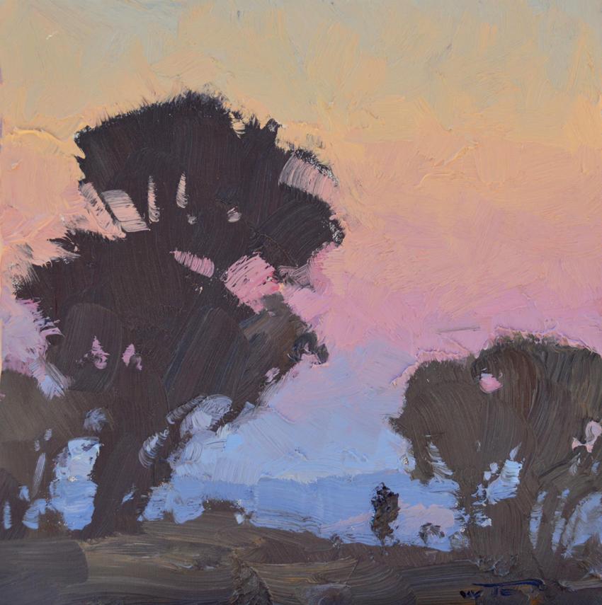 Dawn Quiescence 30x30cm