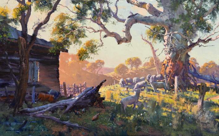 Radiant Afternoon near Canowindra 60 x 90cm