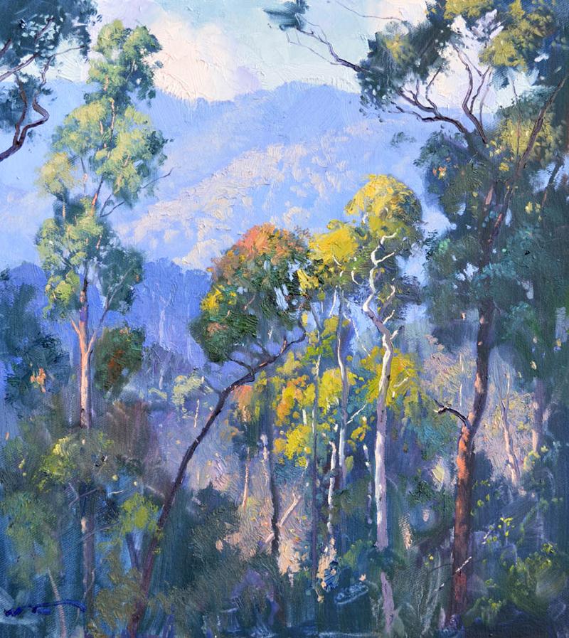 Howqua Hills 50 x 45cm