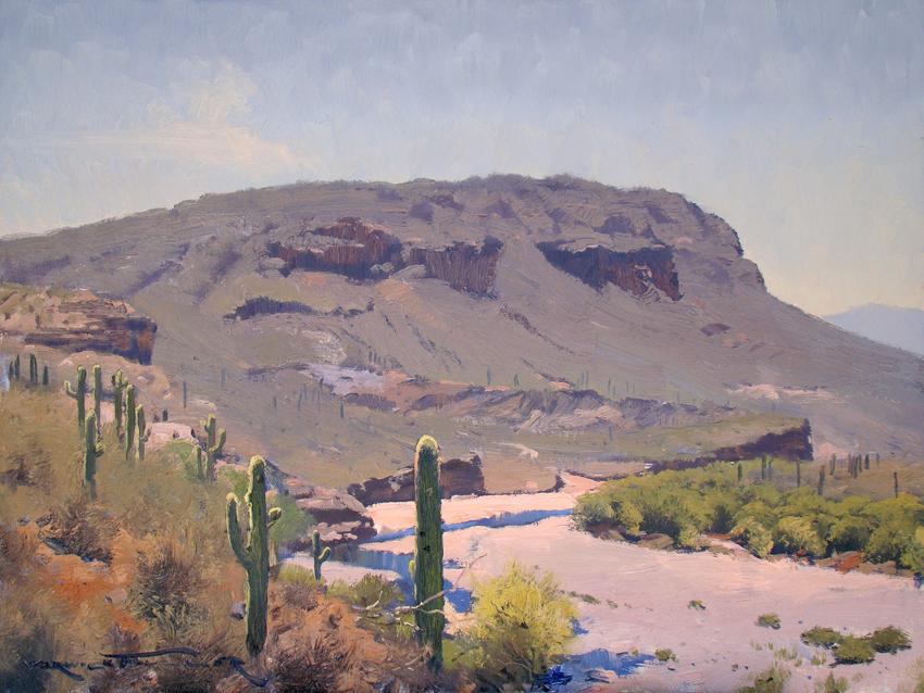 Saguaro and Agua Fria, Arizona 45 x 60cm