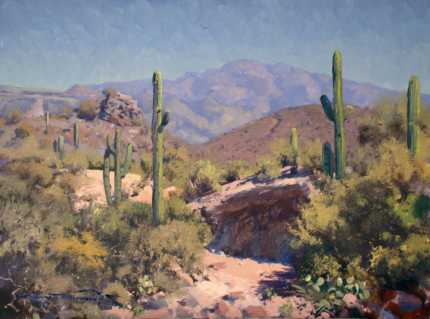 Sonoran Desert Arroyo, Arizona 45 x 60cm