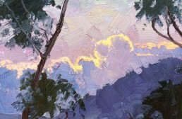 Dawn, Sealys Lookout, Coffs Harbour 30x30cm