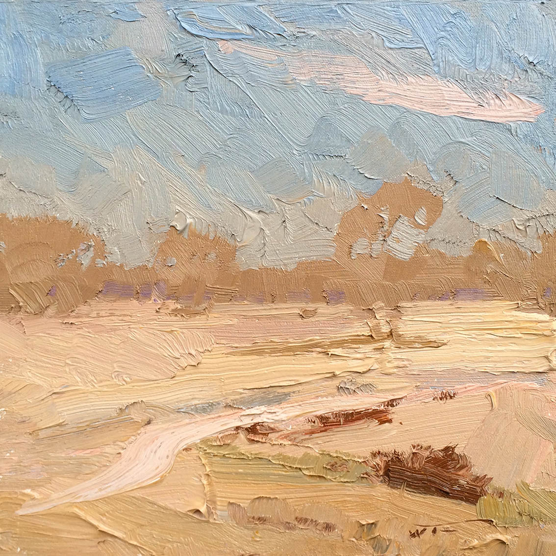 The-Muted-Plains.-Bourke.-30x30cm-copy.jpg