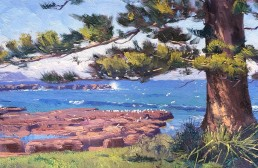 Midday Break, Shellharbour 30 x 60cm