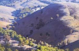 Hills of Velvet, Kanimbla 120cm x 120cm