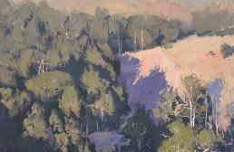 Sunkissed Riverbend, Kanimbla 45cm x 45cm